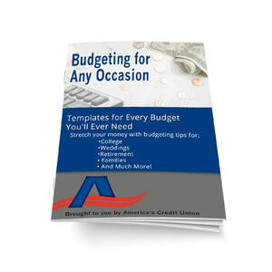 Budget ebook cover and spine